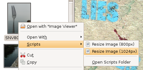 Nautilus context menu resize options